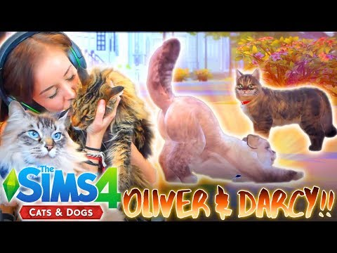 *NEW* 🐱🐶 SIMS 4 CATS & DOGS! MAKING THE CATS!! 😻😸