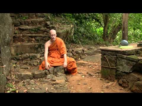 Ask A Monk: Experience of Reality