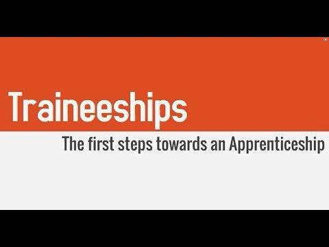Traineeship - The first steps towards an Apprenticeship