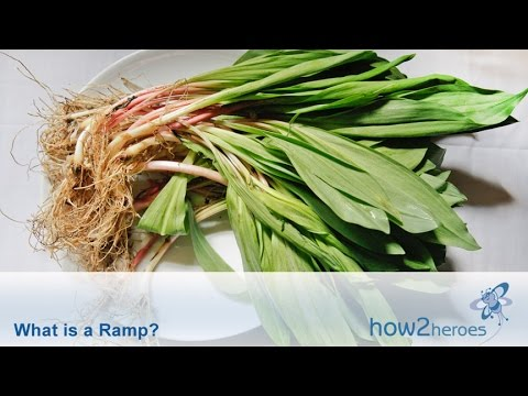 What Is a Ramp? Spring Vegetable Education.