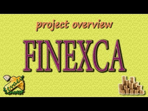 FINEXCA / Overview Of The Company