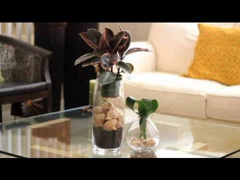How to decorate using seashells decorations for the for Shells decorations home