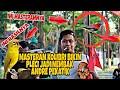 Masteran Kolibri Rahasia Pleci Nembak Andre Pekatik  Mp3 - Mp4 Download