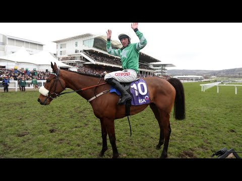 2018 RSA Insurance Novices' Chase - Presenting Percy - Racing TV