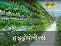 Krishi Darshan - Hydroponics Farming special