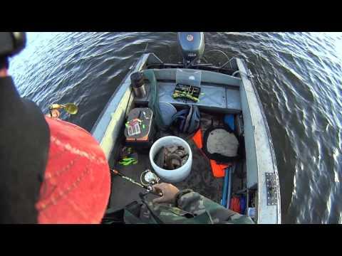 ловля язя на море