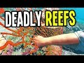 Stranded Deep - NEW DEADLY HAZARDS - Stranded Deep Gameplay - Ep. 14