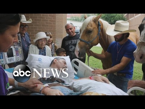 Vietnam Veteran's Touching Goodbye to His Horses