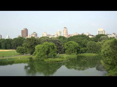 Central Park - Turtle Pond and Great Lawn