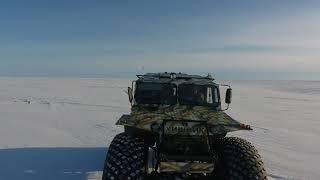 Полювання і риболовля на Чукотці. Хижак в тундрі)