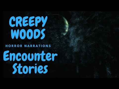 5 True Allegedly Scary Encounters In The Woods Tales