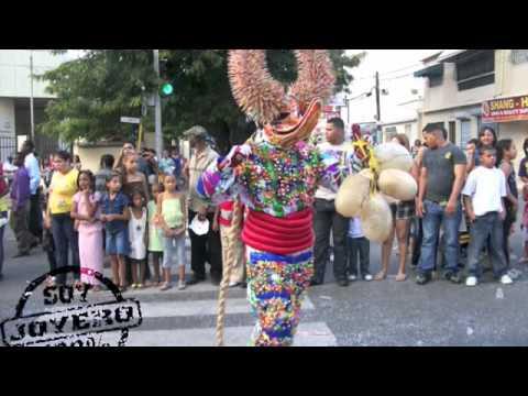 Domingo Carnaval Santiago :: Grupo de Lechones Los Joyeros :: Feb 2009
