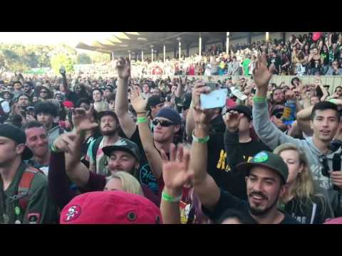 IRATION ~ Falling live Cali Roots 8 2017