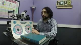 GHHC Steven Galloway Introduction to Iridology