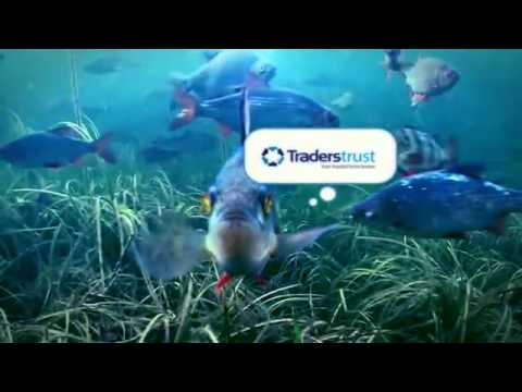 Tracked Fish for -Traders Trust Capital Markets