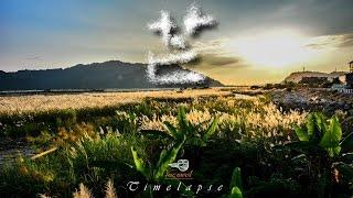 芒 縮時攝影 Time Lapse By Yocowol 1080p HD