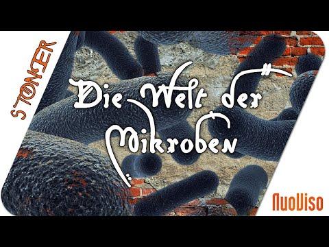 Die Welt der Mikroben - Sie ruft uns zu