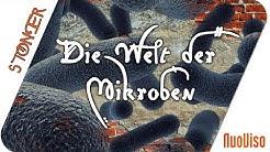 """Die Welt der Mikroben - Sie ruft uns zu """"Think big!"""""""