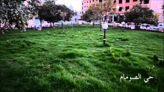 أشغال تهيئة المساحات الخضراء عبر أحياء مدينة سعيدة
