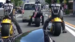 Custom Chopper Motorcycle  BigDog