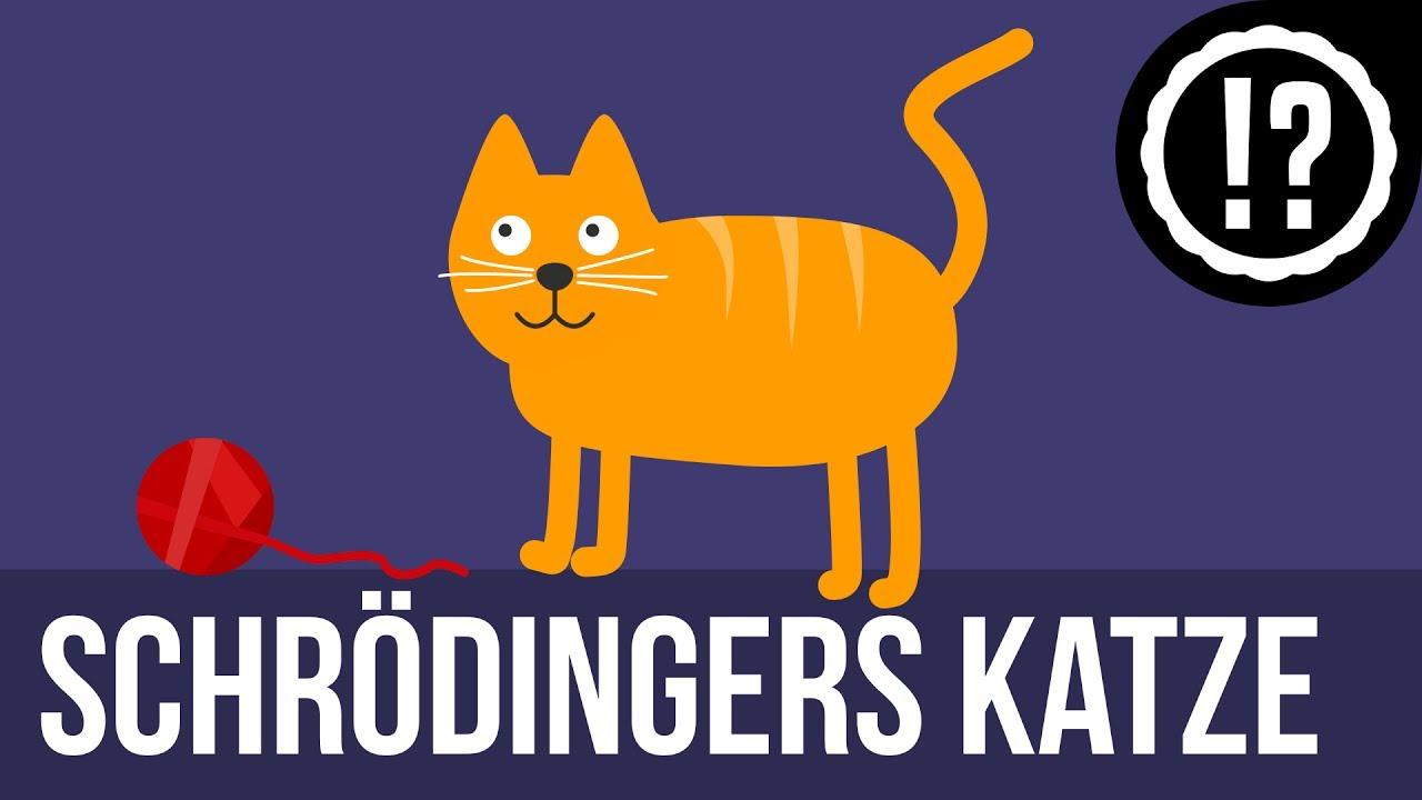 Schroedingers Katze