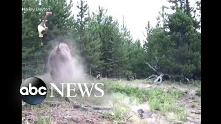 Video: 9-year-old girl tossed violently in the air by charging bison