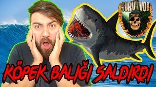 Tatil'de Köpek Balığı Saldırısına Uğradım !!!