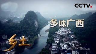 《乡土》 多味广西 走进广西的特色美食 20190704 | CCTV农业