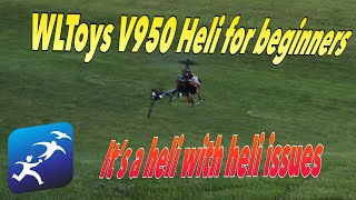 WLtoys V950 Review? More like messing around and getting a first flight before we break it.