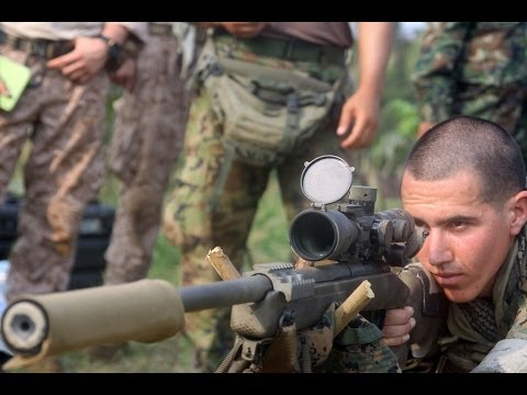 Recon Marines Scout Sniper - Learn What It Takes To Join Marines Special Forces