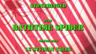 Bathtime Spider