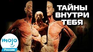 ТОП 10 Загадок Человеческого Тела, Которые Вас Шокируют
