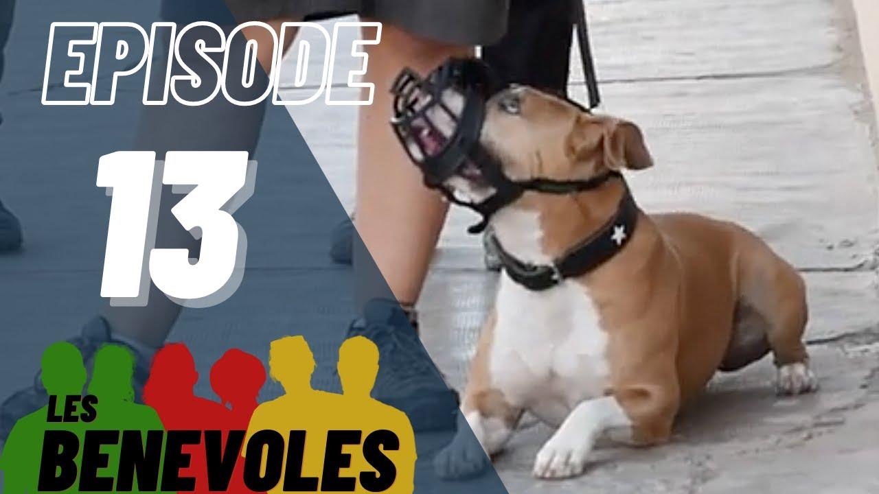 Les Bénévoles - Episode 13 - Esprit Dog