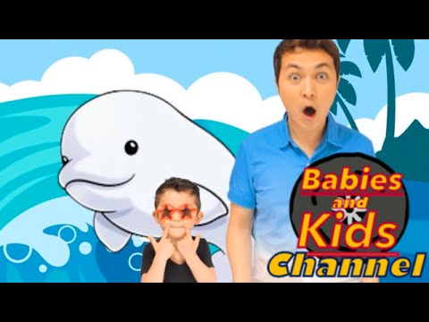 BABY BELUGA | Babies and Kids Channel | Nursery Rhymes for children and toddlers | Raffi