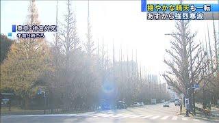 東京14℃・・・暖かな晴天も一転 年末年始は厳しい寒さ(2020年12月29日) - YouTube