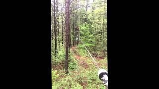 TreeTop Trekking Ganaraska Zip Lining