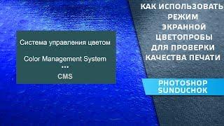 Как использовать режим экранной цветопробы для проверки качества печати | CMS – урок #5