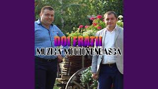 скачать Doi Frați Răsună Muzica în Vale Mp3hqru песню Mp3