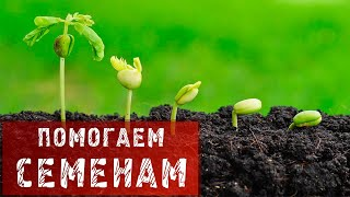 ФАЗЕНДА - 2015.03.29 - Фрагмент 105.