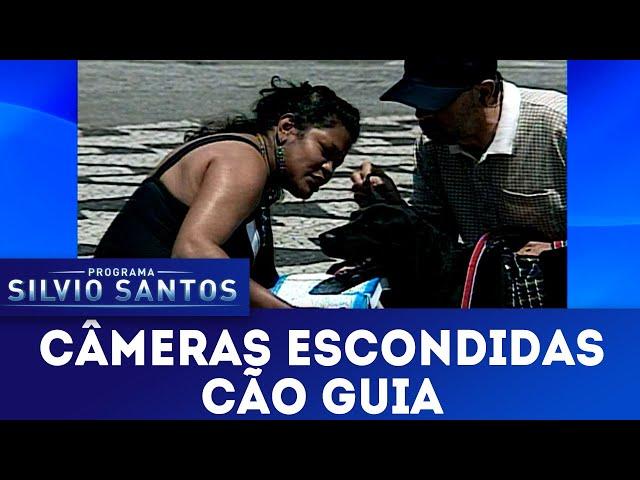 Cão Guia | Câmeras Escondidas (24/02/19)