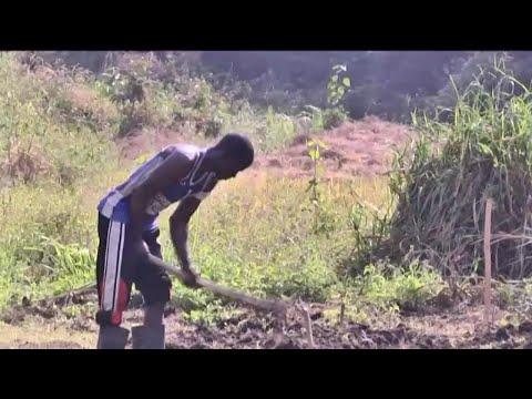 """Guinée, ACCORD FINANCIER POUR LE PROJET """"AGRIFARM"""""""