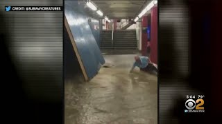 Video Shows Force Of Storm Knocking Down Commuters In Subway