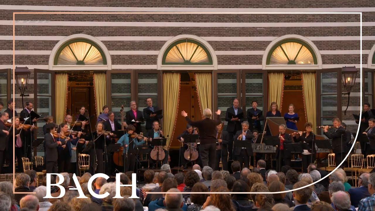 Bach - Cantata Schleicht, spielende Wellen... BWV 206 - Van Veldhoven | Netherlands Bach Society