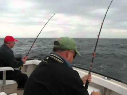 hindsight_sportfishing.mpg
