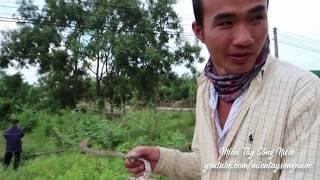 Võ Minh Phụng Tạm Biệt Bình Thuận