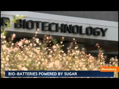 Bio-Batteries Powered by Sugar