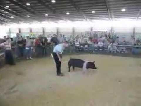 Grant County Fair 2007