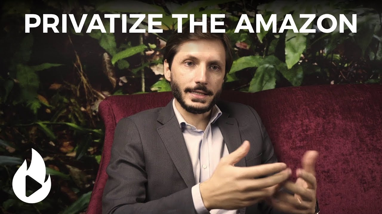 How would privatizing the Amazon be beneficial for the environment?