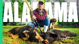 Download Alabama Hog Hunting Gone Wrong (Hospital) *Stitches* Mp3 and Videos