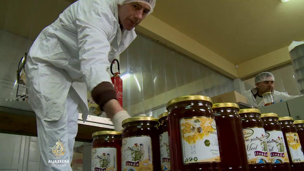 Pčelari iz BiH ne žure s probojem na EU tržište | BiH